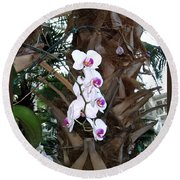 Orchids In The Opryland Hotel In Nashville Tennessee Round Beach Towel