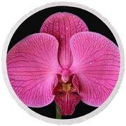 Orchids Round Beach Towel