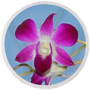 Orchids With Blue Sky Round Beach Towel