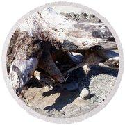 Oregon Beach - Driftwood Trunk Round Beach Towel