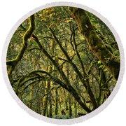 Oregon Rainforest Green Round Beach Towel