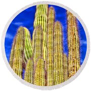 Organ Pipe Cactus Arizona By Diana Sainz Round Beach Towel