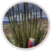 Organ Pipe Cactus The Visitor 1 Round Beach Towel