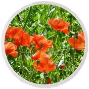 Oriental Poppies Round Beach Towel