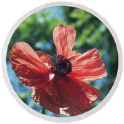 Oriental Poppy Round Beach Towel