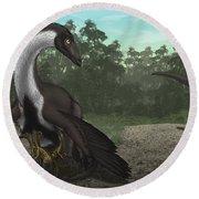 Ornithomimus Mother Dinosaur Round Beach Towel by Vitor Silva