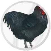 Orpington Rooster Round Beach Towel