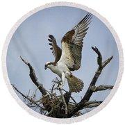 Osprey Building A New Nest Round Beach Towel