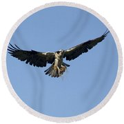 Osprey Round Beach Towel