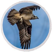 Osprey Flying Away Round Beach Towel
