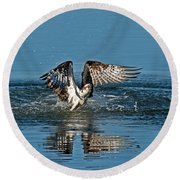 Osprey Getting Out Of The Water Round Beach Towel