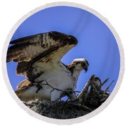 Osprey In The Nest Round Beach Towel