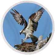 Osprey Mating Round Beach Towel
