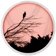 Osprey Moon Round Beach Towel