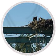 Osprey Nest With Mom And Chicks Round Beach Towel