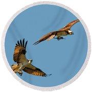 Osprey Pair Round Beach Towel