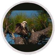 Osprey Preen 1 Round Beach Towel