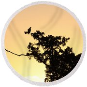 Osprey Sunset Round Beach Towel