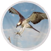 Osprey With Talons Extended Round Beach Towel