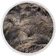 Ostrich Feathers  Round Beach Towel