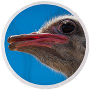 Ostrich Profile Round Beach Towel