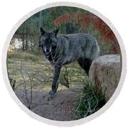Out Of Africa Black Wolf Round Beach Towel