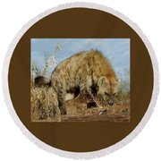 Out Of Africa Hyena 1 Round Beach Towel