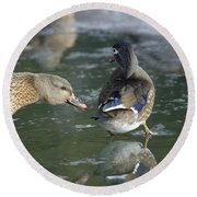 Out Of My Roosting Ice Spot Shorty Round Beach Towel