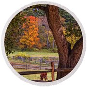 Out To Pasture Round Beach Towel by Joann Vitali
