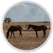 Outback Horses Round Beach Towel