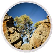 Outback Tree Round Beach Towel