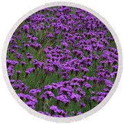 Outnumbered Round Beach Towel