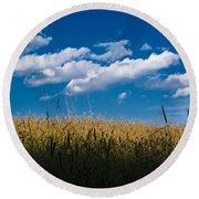Over The Grass Round Beach Towel