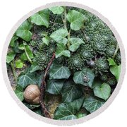 Overgrown Wall With Snail Round Beach Towel