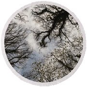 Overhead Trees In Exmoor, United Kingdom Round Beach Towel