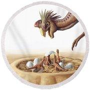 Oviraptor And Nest Round Beach Towel
