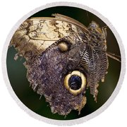 Owl Butterfly Round Beach Towel