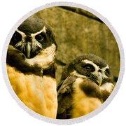 Owl I Round Beach Towel