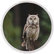 Owl In The Forest Visits Round Beach Towel