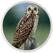 Owl See You Round Beach Towel