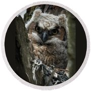 Owlet On The Watch Round Beach Towel