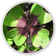 Oxalis Deppei Named Iron Cross Round Beach Towel