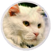 P C - Perfect Cat Round Beach Towel