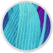 P4240195 - Eye Lens Fiber  Round Beach Towel by Spl