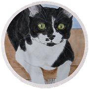 Pablo The Cat Round Beach Towel