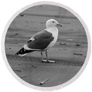 Pacific Seagull In Black And White Round Beach Towel