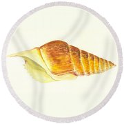 Pacific Triton Sea Shell Round Beach Towel
