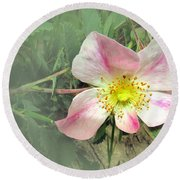 Paint Mines Wild Rose Round Beach Towel