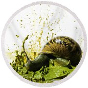 Paint Sculpture And Snail 2 Round Beach Towel