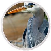 Painted Blue Heron Round Beach Towel